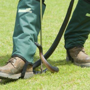 snake-gaiters-snake-protection-australian-snakes